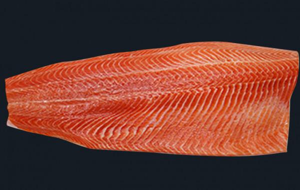 Petuna Ocean Trout Fillet
